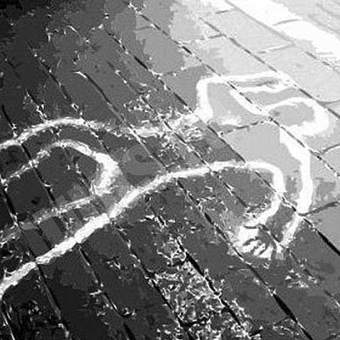 Загарія: Вбивць працівника ДАІ у Львові уже затримали