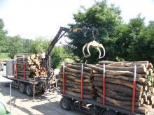 "Экс-директор государственного лесохозяйства ""назлоупотреблял"" на 250 000 гривен"
