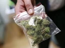 За год правоохранители изъяли на Львовщине 265 килограмм наркотических средств