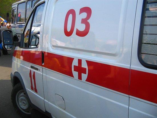 Во Львовской области на женщину напала змея