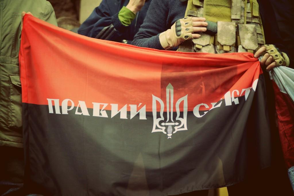 """Документи """"у справі Тимошенко"""" забрав """"Правий сектор"""" – Найєм"""