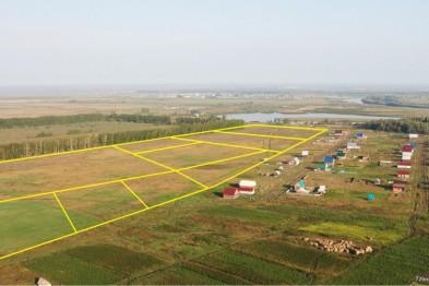 На Львівщині судитимуть директора підприємства за незаконне відчуження 14 га земель вартістю 28 млн грн