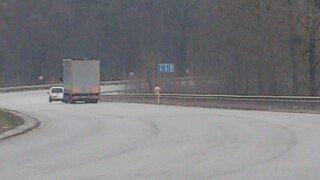 Неподалік Львова по дорозі біг голий чоловік (ФОТО)