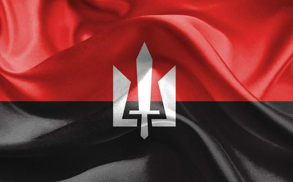 У «Правому секторі» пояснили, що зробили з матеріалами справи проти Тимошенко