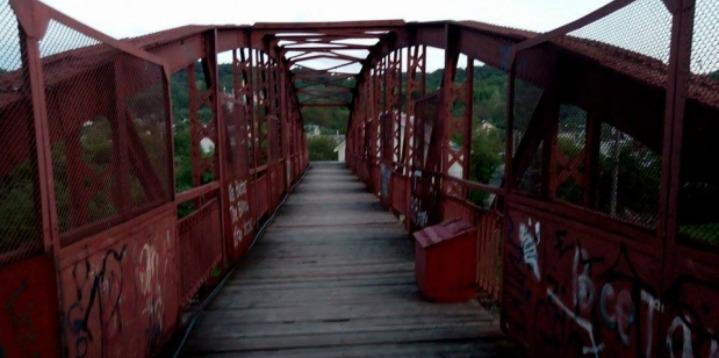 Львівські активісти просять про ремонт аварійного мосту (ФОТО)