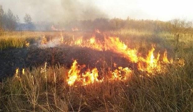 Ближайший очаг возгорания находится в 30 километрах от ЧАЭС