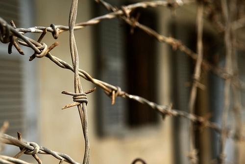 За минулу добу у підрозділах органів внутрішніх справ міста Львова було зареєстровано 40 злочинів