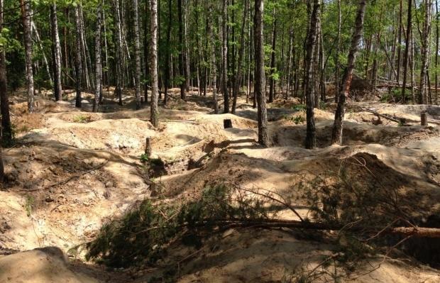 На Житомирщине незаконной добычей янтаря повреждено почти 200 га земель лесохозяйственного назначения