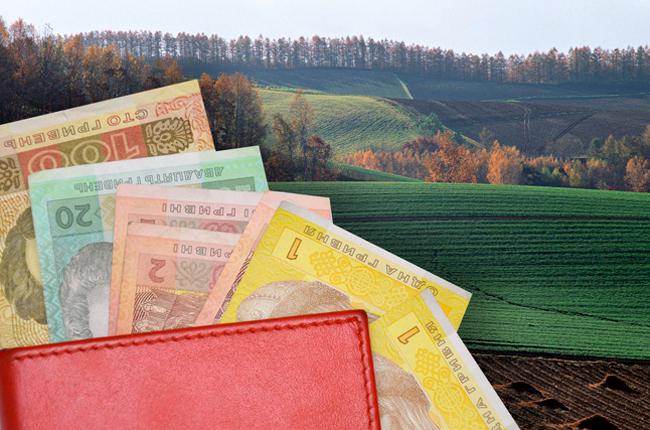 У Дрогобичі хочуть поповнити бюджет на 1,1 млн грн, через продаж земельних ділянок