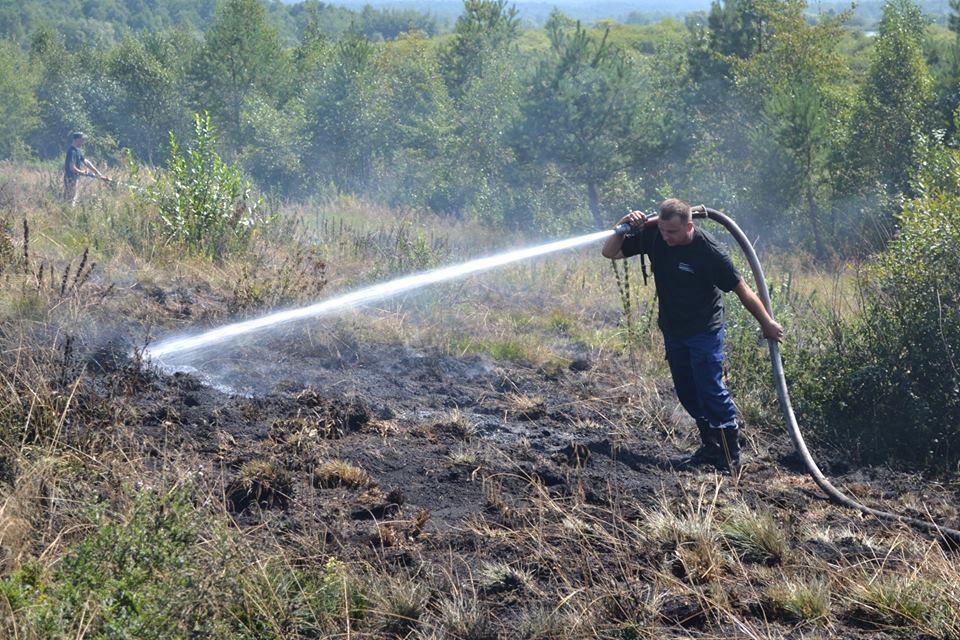 На Львівщині продовжують масово спалювати сухостій