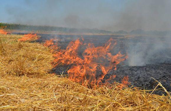 На Львовщине пенсионер получил ожоги, сжигая стерню