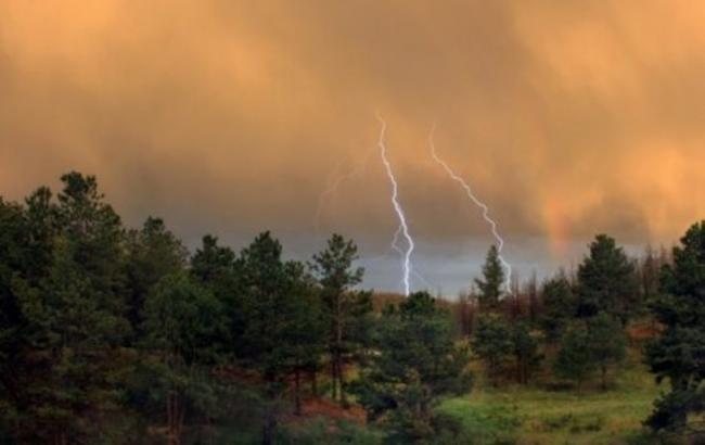 На Франковщине молния убила двух человек, один пострадавший – в больнице, – ГСЧС