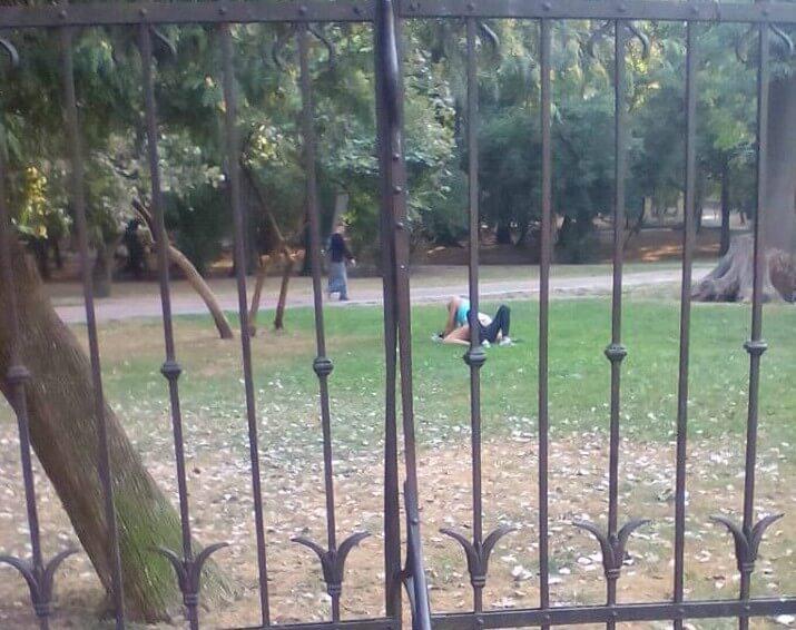 Пара зайнялася сексом в парку у центрі Львова (ФОТО)