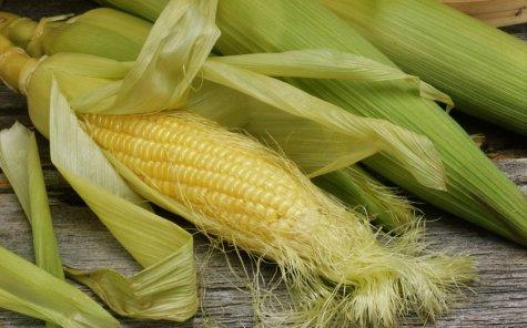 На Львівщині жидачівські міліціонери викрили крадіїв кукурудзи