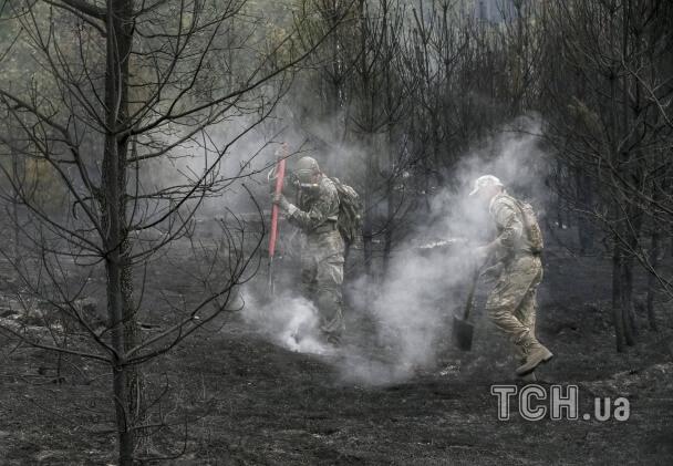 Зявилися перші фото згарища лісу під Києвом