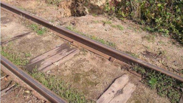 Янтарные искатели уничтожили самую длинную в Европе узкоколейку (Фото)