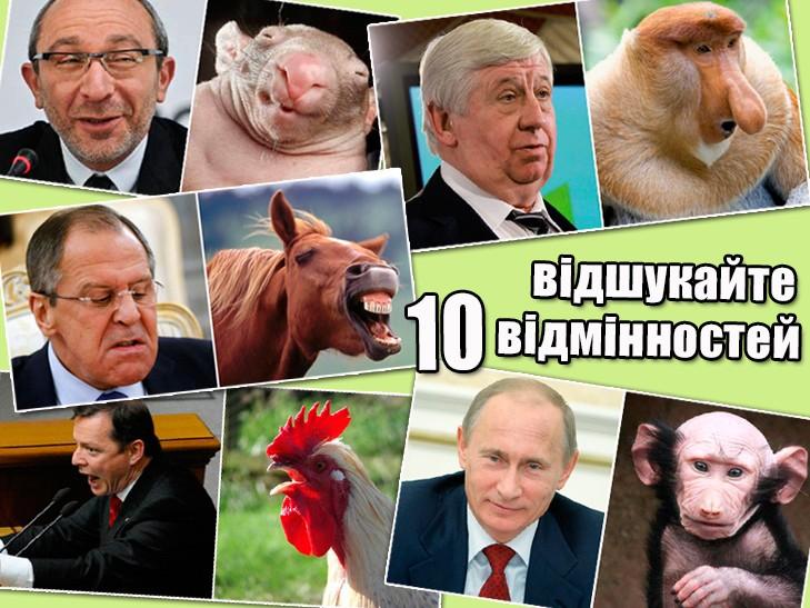 Політики та тварини: Які звіри сплять в Яценюкові, Ляшку і Парасюку (ФОТО)