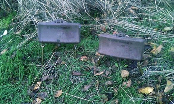В Донецкой обл. местный житель нашел в лесополосе две боевые мины