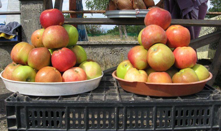 В Тернополе пенсионерки едва не подрались из-за дешевых яблок (ВИДЕО)