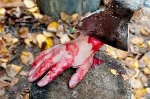 У Львові на території садового кооперативу знайшли останки ненароджених дітей та немовлят