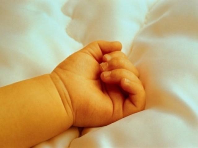 На Запоріжжі у вигрібній ямі знайдена рука немовляти