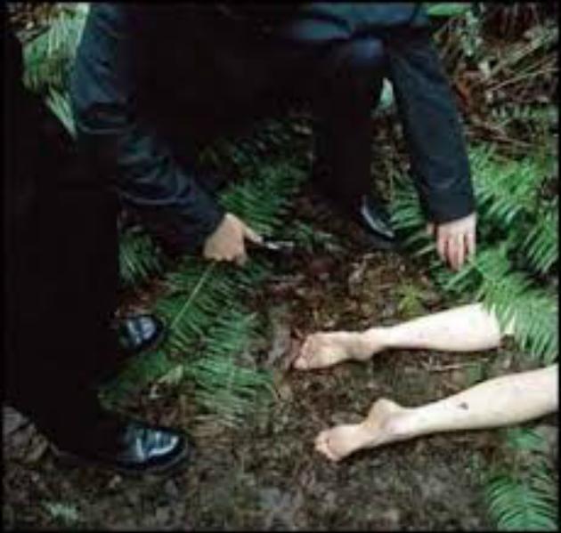 У лісі біля Львова знайшли труп 26-річної  вбитої і згвалтованої дівчини