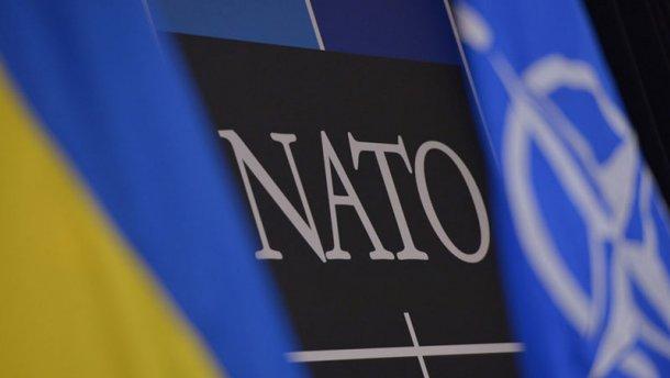 Экс-чиновник НАТО рассказал, какие страны уже готовы принять Украину в Альянс