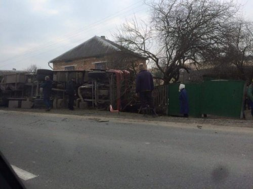 На Львівщині перекинулася вантажівка, яка перевозила 200 свиней