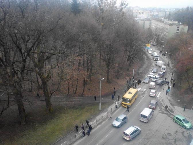 Масштабна потрійна ДТП у Львові: вся вулиця заблокована (ФОТО)