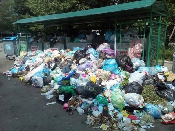 Як Львів повільно «потопає» у смітті (ФОТО)