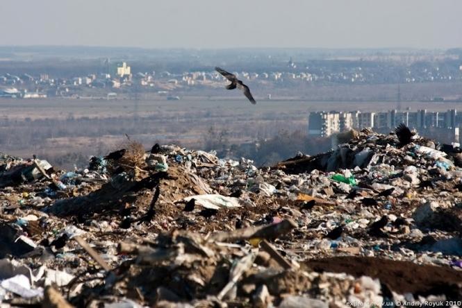 Прокуратура вирішила не розслідувати причини пожежі на сміттєзвалищі в Грибовичах