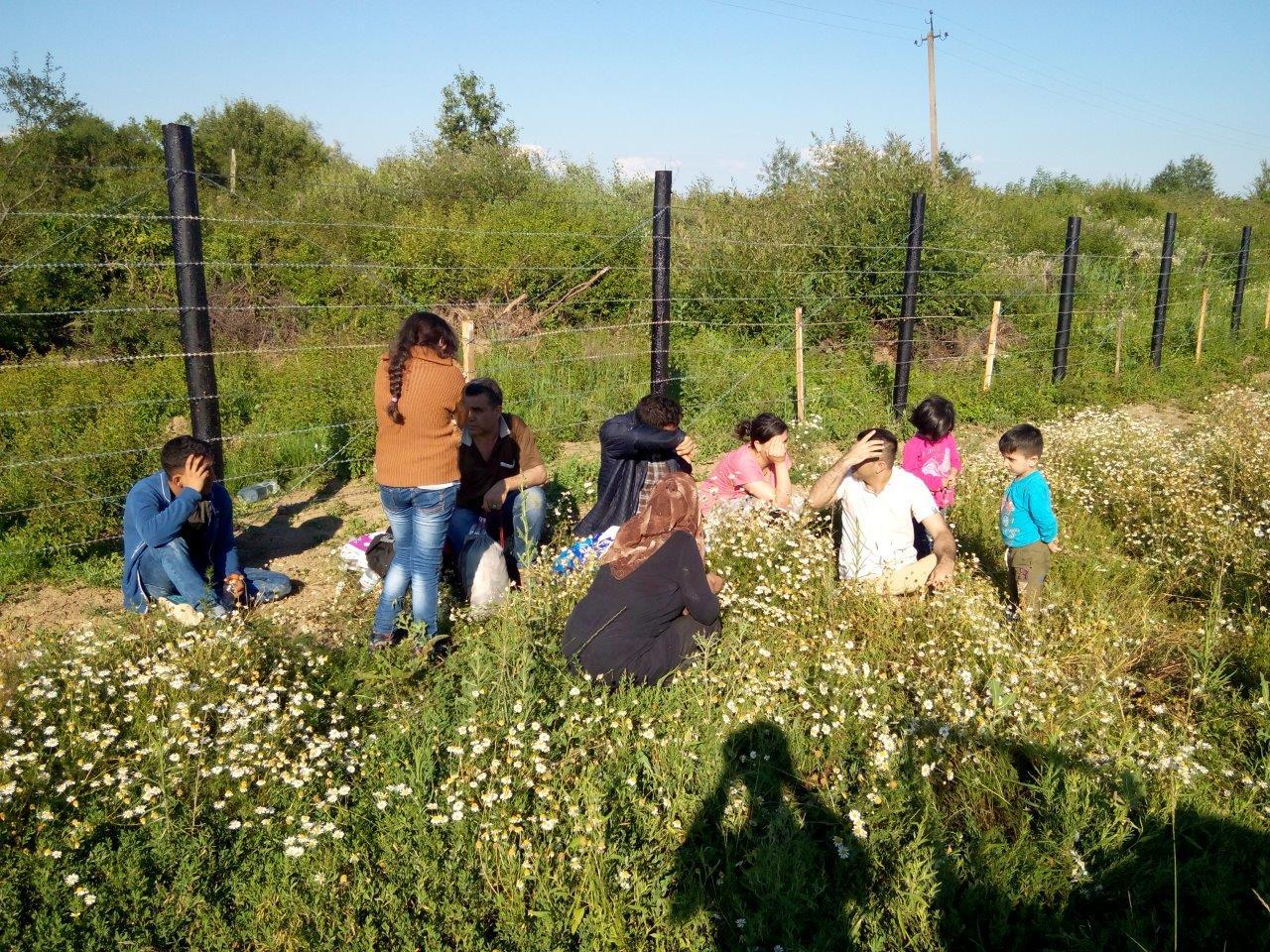 На Закарпатті затримали 9 нелегальних мігрантів з Афганістану