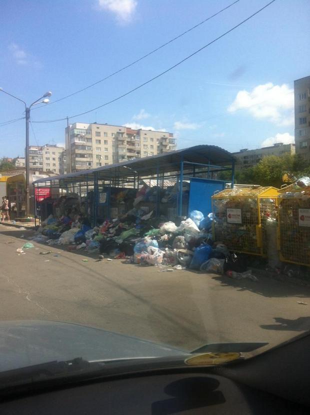 Як спальні райони Львова тонуть у смітті (ФОТО)