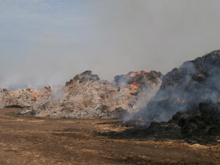 Під Харковом сталася масштабна пожежа