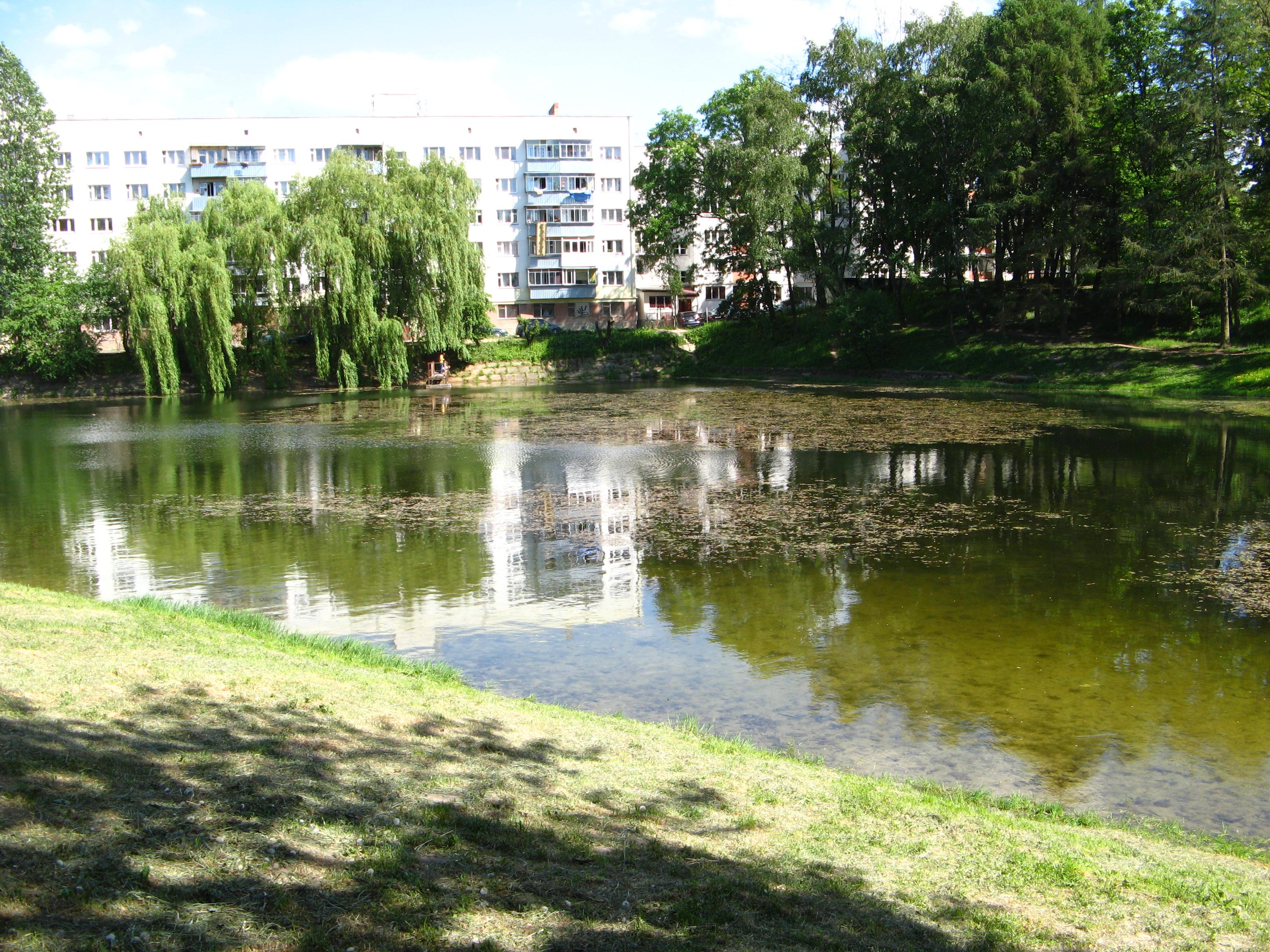 На території одного з парків Львова втопився чоловік