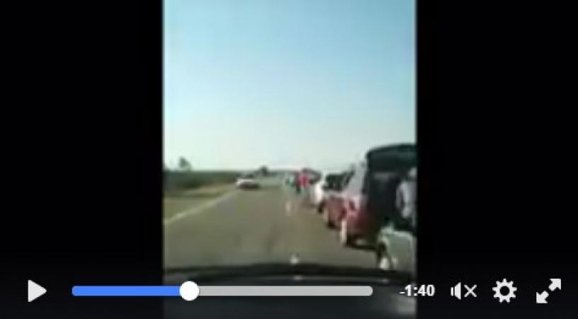 Останні туристи тікають з окупованого Криму (відео)