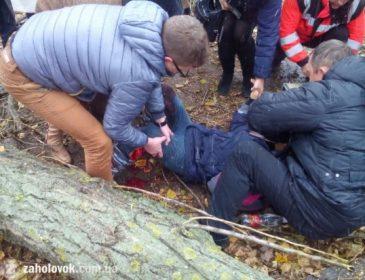 Це щось жахливе: комунальники рубали дерево і покалічили ноги дівчинці (ФОТО)