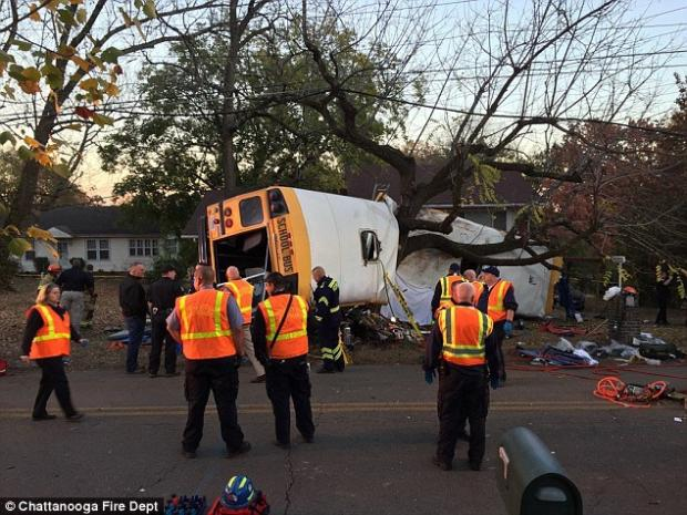 Жахлива трагедія: шкільний автобус влетів у дерево. Десятки постраждалих. Батьки в горі (ФОТО)