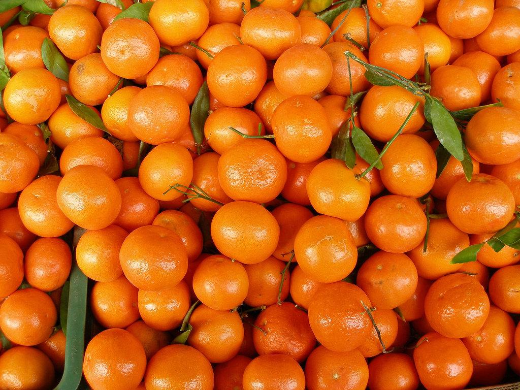 ОБЕРЕЖНО! В Україну потрапили заражені мандарини