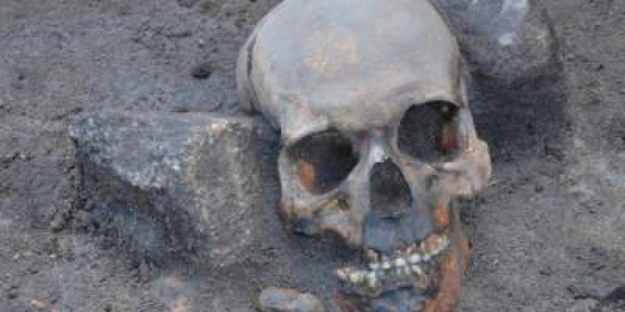 Археологи розкопали 2 скелети, вони думали, що вони людські, але такої правди ніхто не очікував