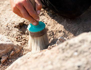 Це щось справді дивовижне: археологи навіть не очікували натрапити на таку знахідку. Побачене просто вражає (ВІДЕО)