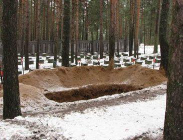 Холоднокровний вбивця: на Запоріжжі син задушив свою стареньку матір