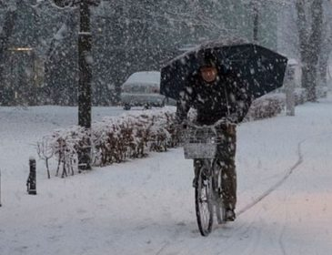 Сніжний апокаліпсис повністю накрив Європу: це вражає