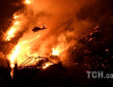 Аж мурашки по шкірі: масові пожежі охопили Нову Зеландію. Живого нічого не лишається (ВІДЕО)