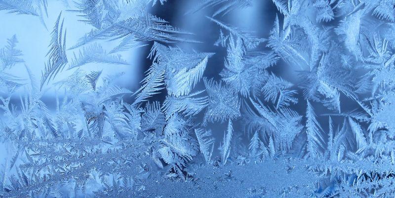 ТЕРМІНОВО!!! Трагедія на Херсонщині: Масові смерті через морози (ФОТО)
