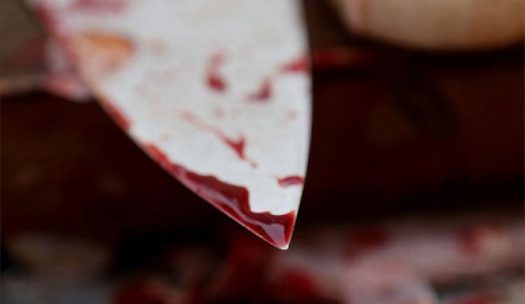 Нечувана жорстокість: чоловік вбив свого односельця і згодував його труп свиням