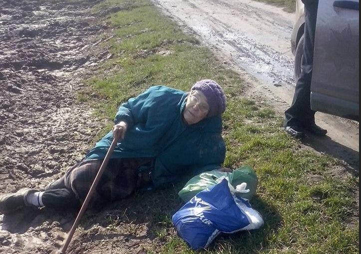 Руки їй би за таке пообрубувати: львів'янка вивезла в поле помирати свою 85-річну матір, причина шокує