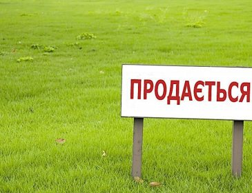 Поспішайте придбати! На Львівщині рекордно впали ціни на землю