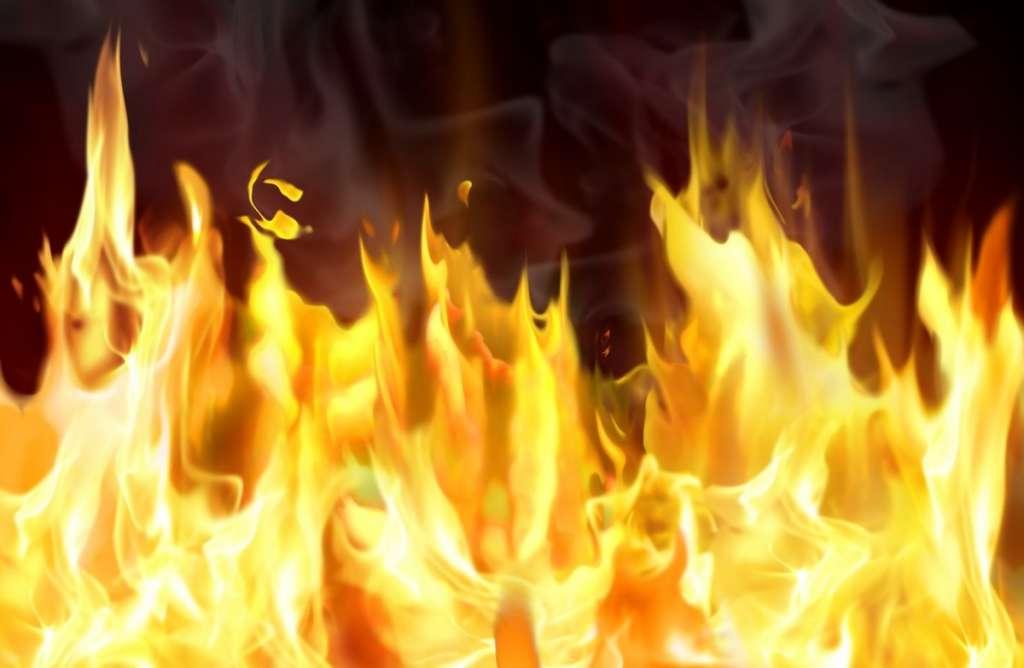 Екологи в паніці: Маштабна пожежа охопила Херсонщину