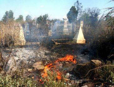 Якай ЖАХ! Невідомі підпалили кладовище! В це важко повірити!